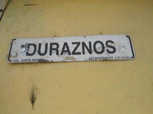 th_DSC07037